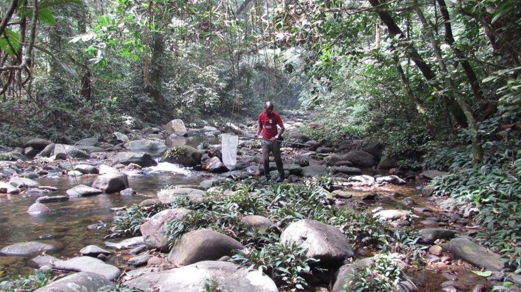 L'attribut alt de cette image est vide, son nom de fichier est Terrain-Ojonugwa-Ekpah_protocole-Cross-River-National-Park-1-1024x574.png.